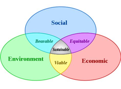 Essay On Caring For The Environment Free Essays